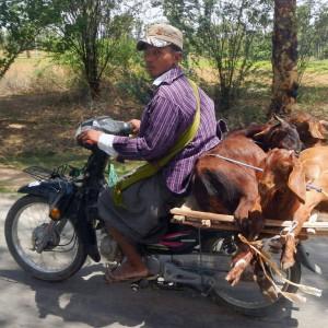 voyage-birmanie-authentique (1)