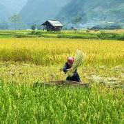birmanie-roads-fr (11S)