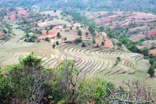 kalaw-Birmanie